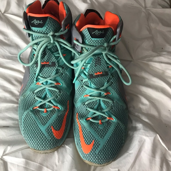 new product 78467 689d6 Nike Lebron James XII Basketball Shoes